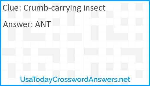 Crumb-carrying insect Answer