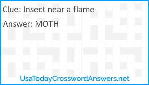 Insect near a flame Answer