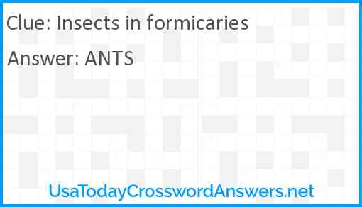 Insects in formicaries Answer