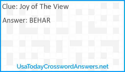 Joy of The View Answer