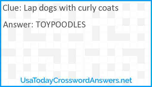 Lap dogs with curly coats Answer